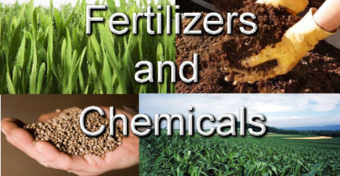 fertilizer